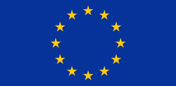 Brexit in Focus