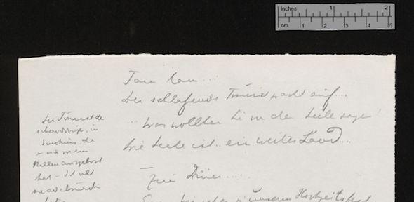 Writings of Schnitzler
